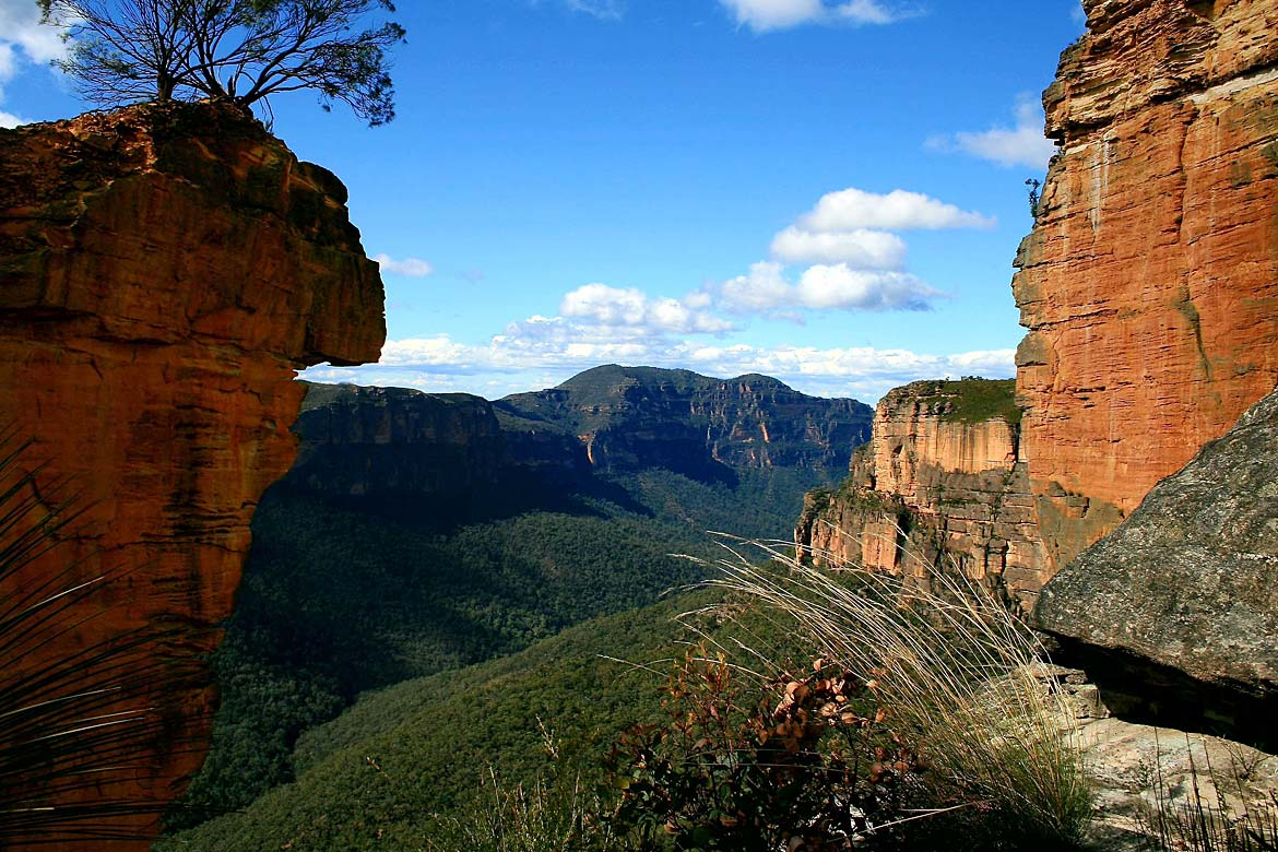 Ausztrália: Blue Mountains National Park